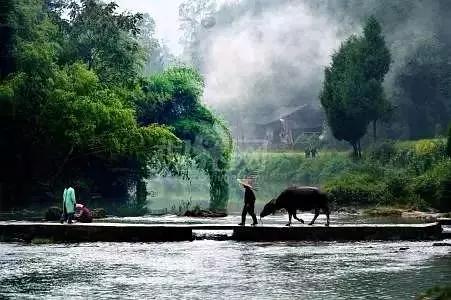 中国十五大著名短篇小说